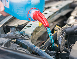Pouring antifreeze into the car